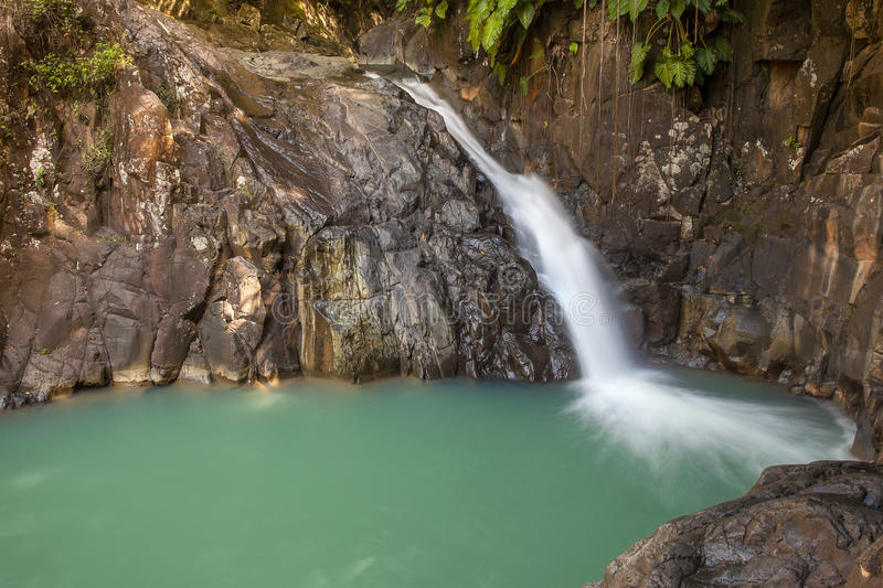Download Waterfall In Tropical Guadeloup Stock Photo - Image: 28296026