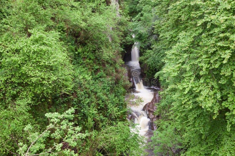 Download Waterfall Between Vegetation Stock Image - Image: 31951887