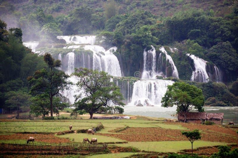 Waterfall in Vietnam stock image