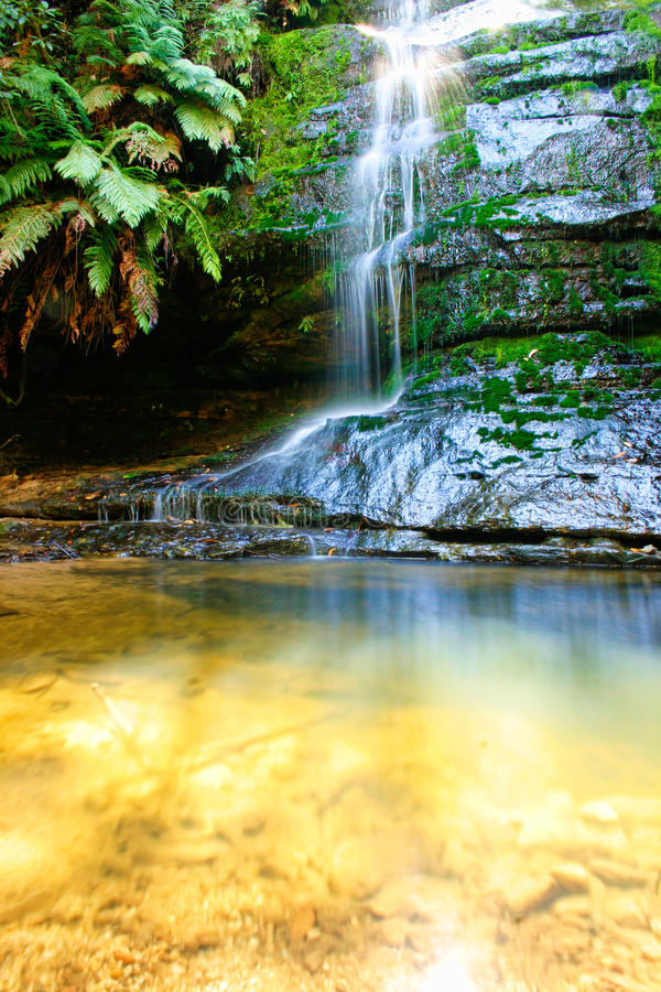 Download Waterfall stock image. Image of maidenhair, pool, landscape - 32441791