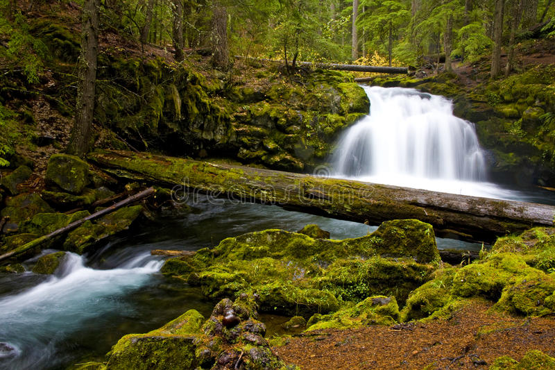 Waterfall Water Cascading over Rocks royalty free stock photos