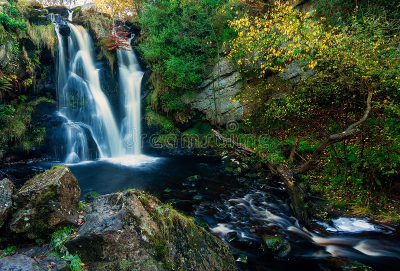 Waterfall, Water, Nature, Vegetation Free Public Domain Cc0 Image