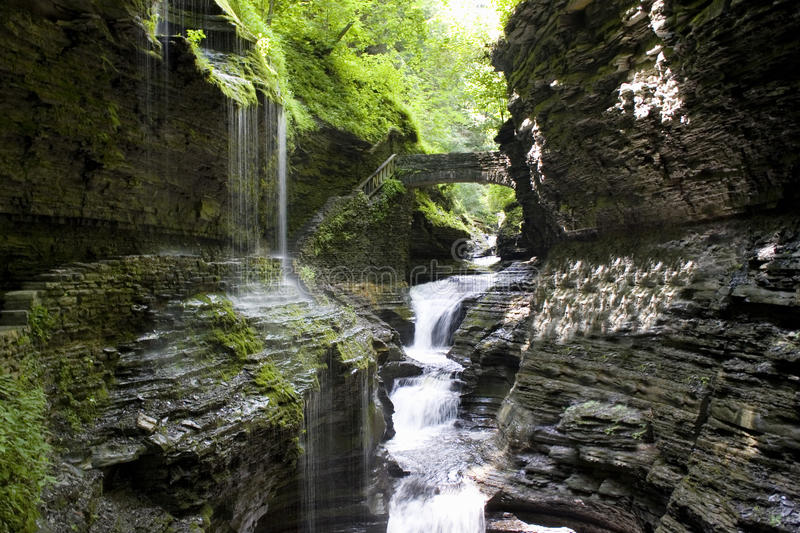 Download Waterfall at Watkins Glen stock photo. Image of trees - 11846676