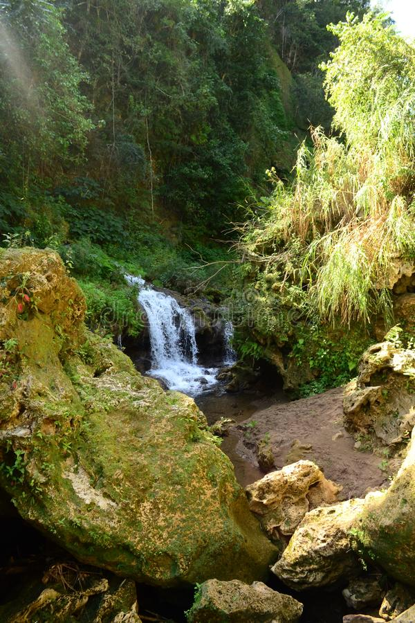 Waterfall in the wild tropical forest. El Nicho Waterfalls, Cuba royalty free stock images