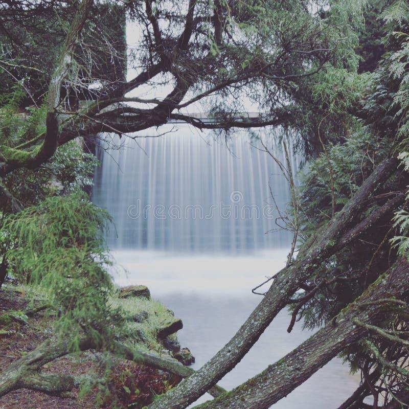 Waterfall in winter stock photos