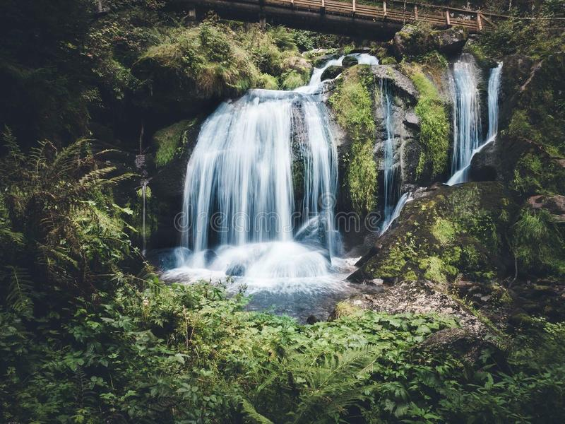 Waterfall in the wood. With a bridge stock photo