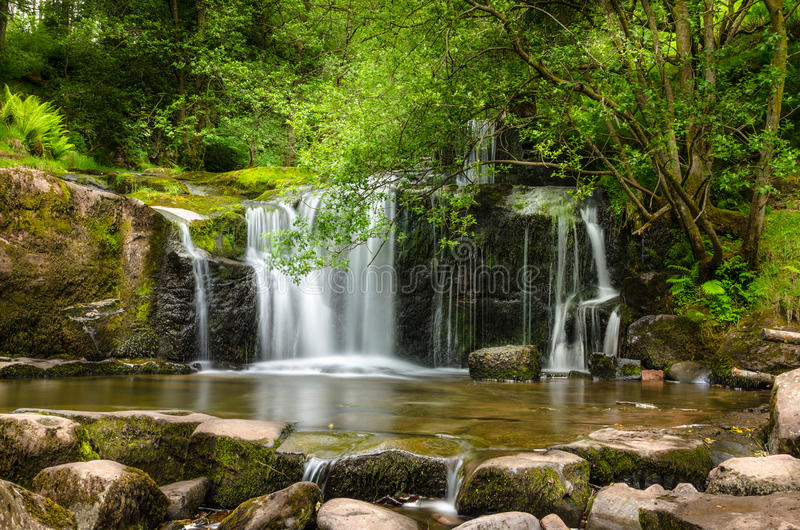 Waterfall in a Wood stock image