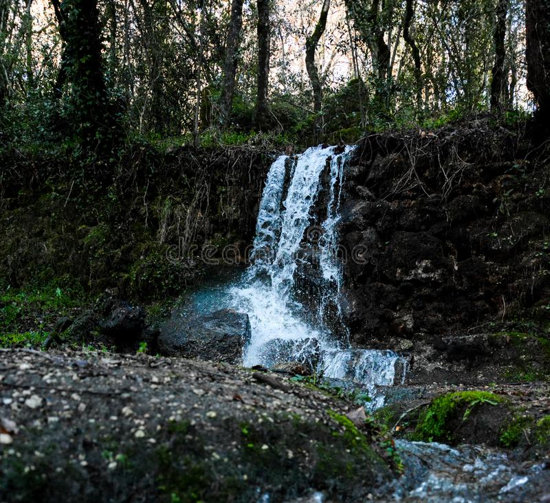 Waterfall in the woods stock photo