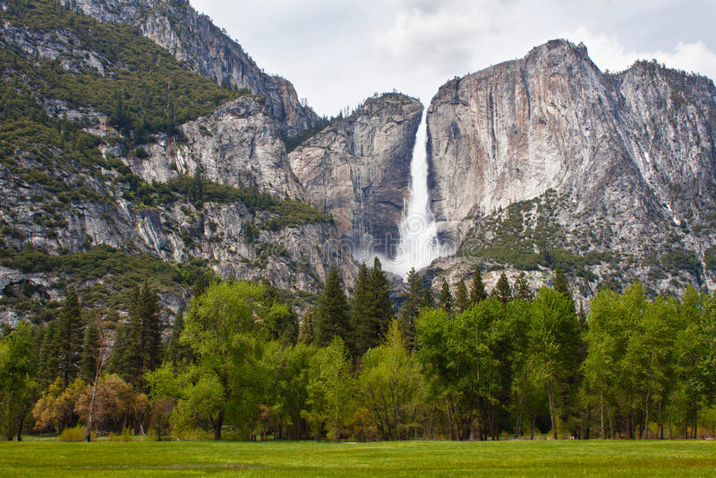 Download Waterfall In Yosemite National Park Stock Photo - Image: 23312162