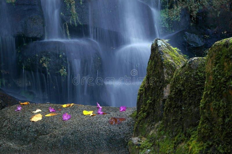 Waterfall02 fotografía de archivo