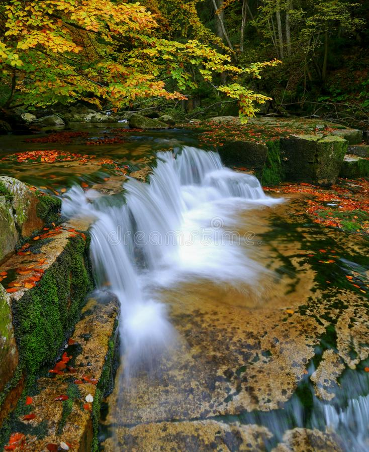 Waterfalls cascade in autumn forest. Beautiful colors of nature royalty free stock image