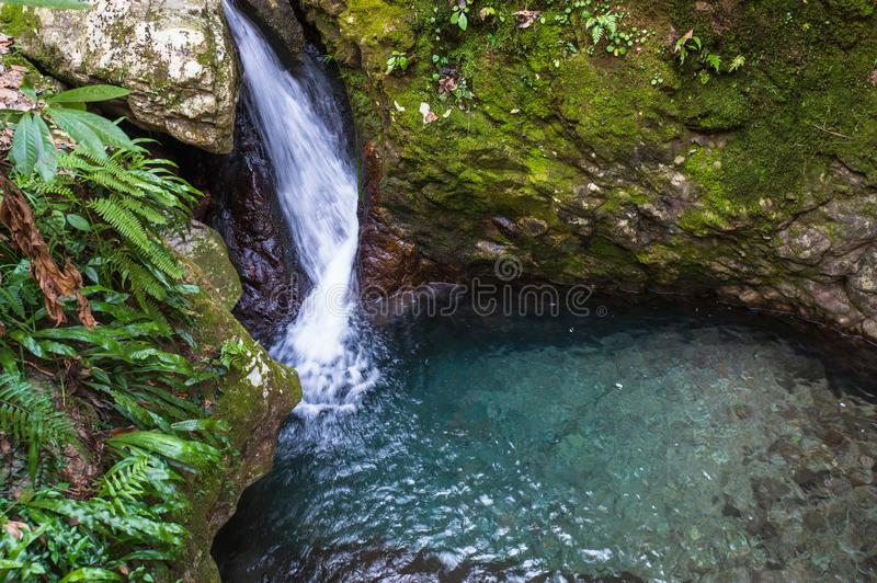 Waterfalls in dense forest. Beautiful waterfall with clear water among dense forest royalty free stock photography