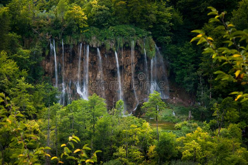 Waterfalls and forest, Plitvice Lakes, National Park, Forest, Croatia. Waterfalls in National park of Plitvice Lakes situated in Northern Croatia. Picture was royalty free stock photo