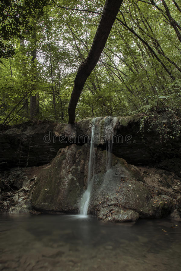 Waterfalls immersed in the green of a forest royalty free stock photos