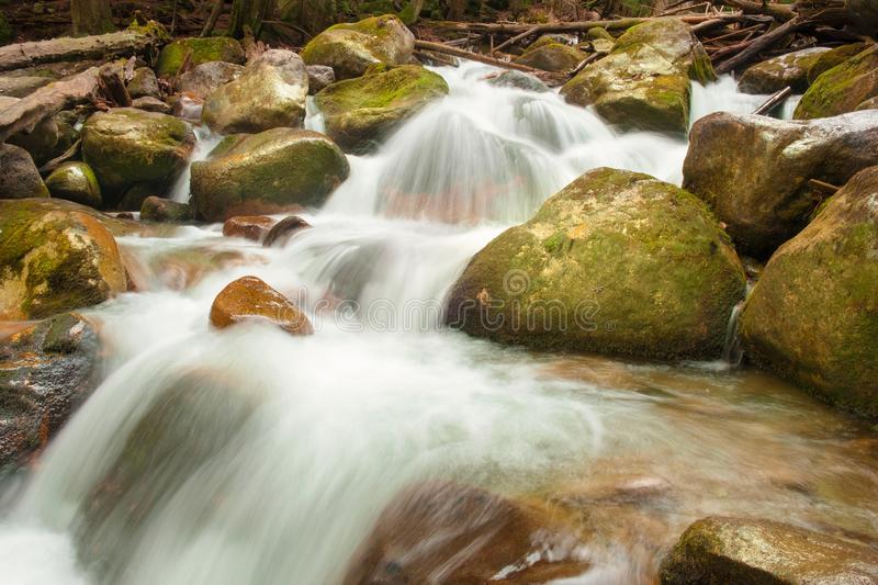 Waterfalls and rapids of the mountain river, streams of pure river water flow through the rocks surrounded by mountainous. Coniferous forests in early spring stock photos
