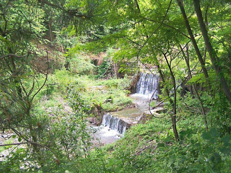 Waterfalls 2. Waterfalls on river rasina in grcak royalty free stock photos