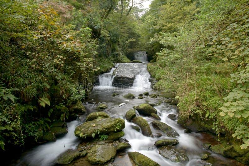 Waterfalls at Watersmeet, Lynmouth, Exmoor, North Devon. Waterfalls running beneath trees at Watersmeet, Lynmouth, Exmoor, North Devon royalty free stock images