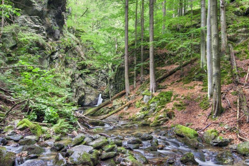 Download Waterfalls stock photo. Image of creek, movement, preserve - 30861902
