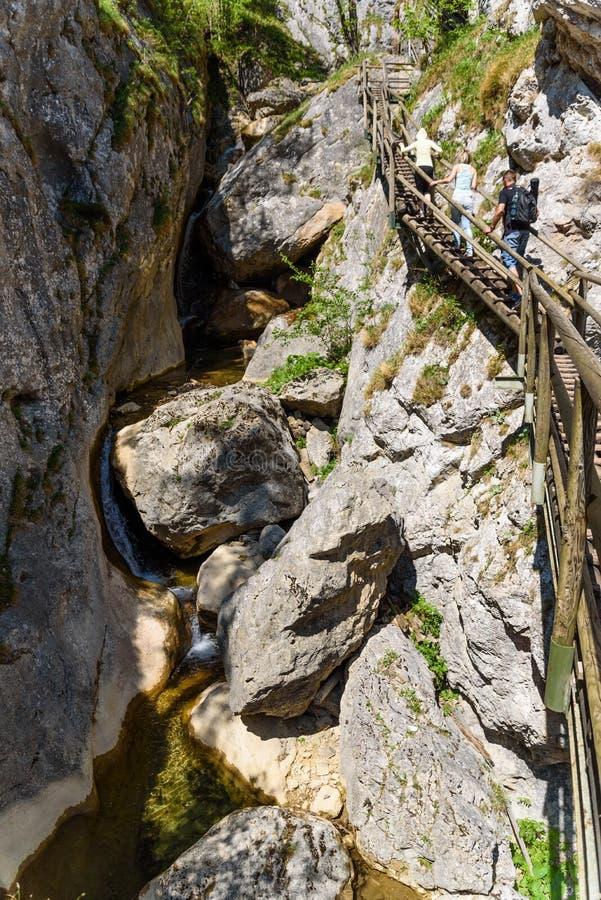 Waterfalls in Styria Mixnitz royalty free stock photo