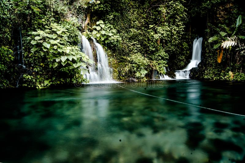 Waterfalls Surrounded by Green Trees stock photo