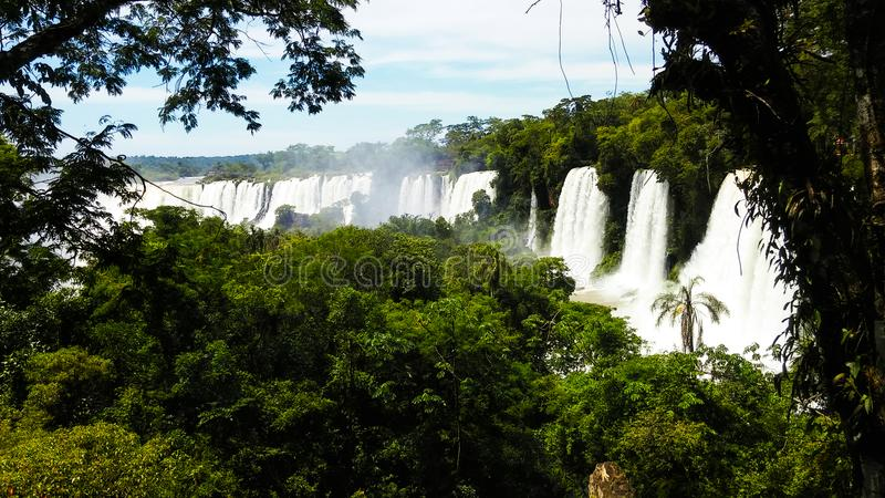 Waterfalls Surrounded by Trees royalty free stock photography