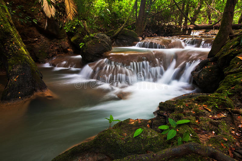 Download Waterfalls in Trang. stock photo. Image of cataract, jungle - 35291654