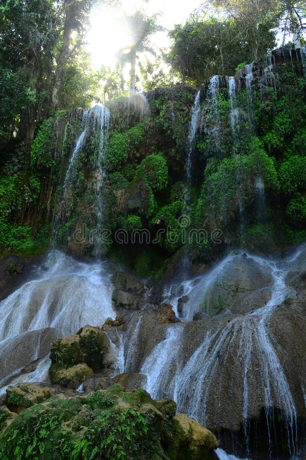 Waterfalls in the wild tropical forest. El Nicho Waterfalls, Cuba royalty free stock image