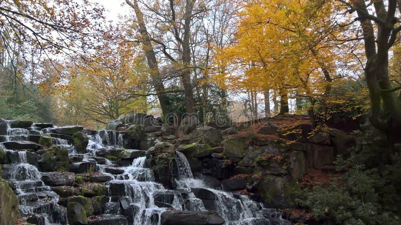 Waterflall de conexión en cascada en Windsor Great Park foto de archivo libre de regalías