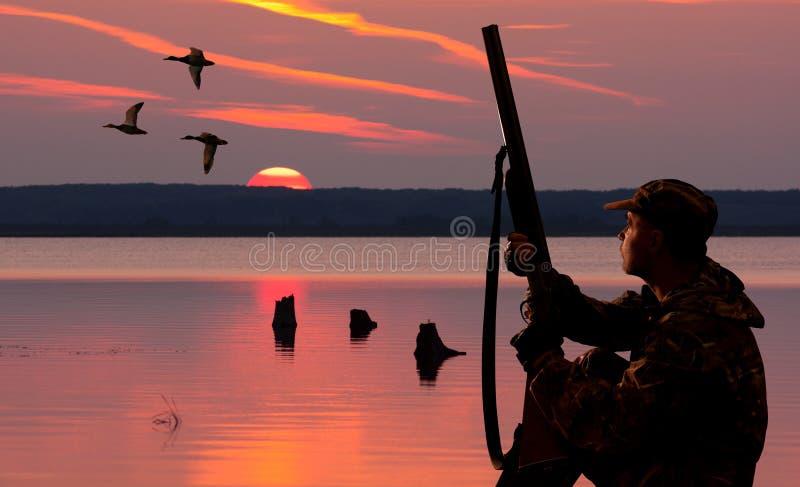 Waterfowler przy zmierzchu tłem zdjęcia stock