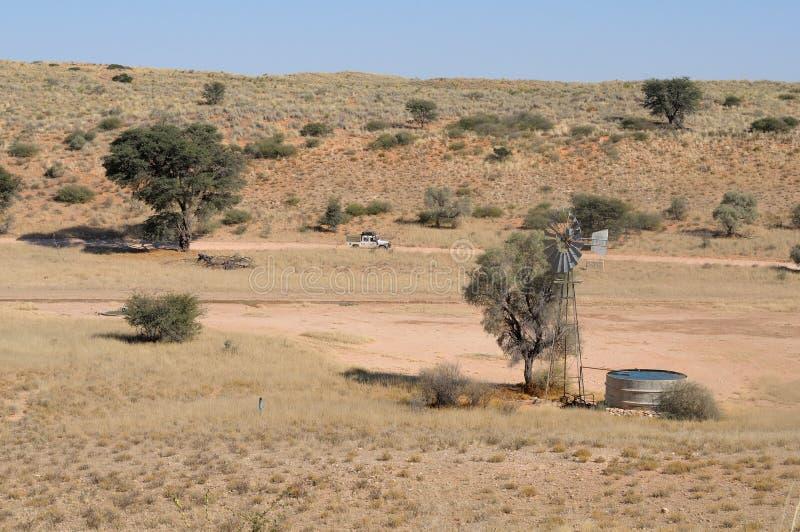 Waterhole de Auchterlonie, parque internacional de Kgalagadi foto de stock royalty free