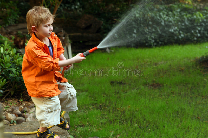 Watering royalty free stock images