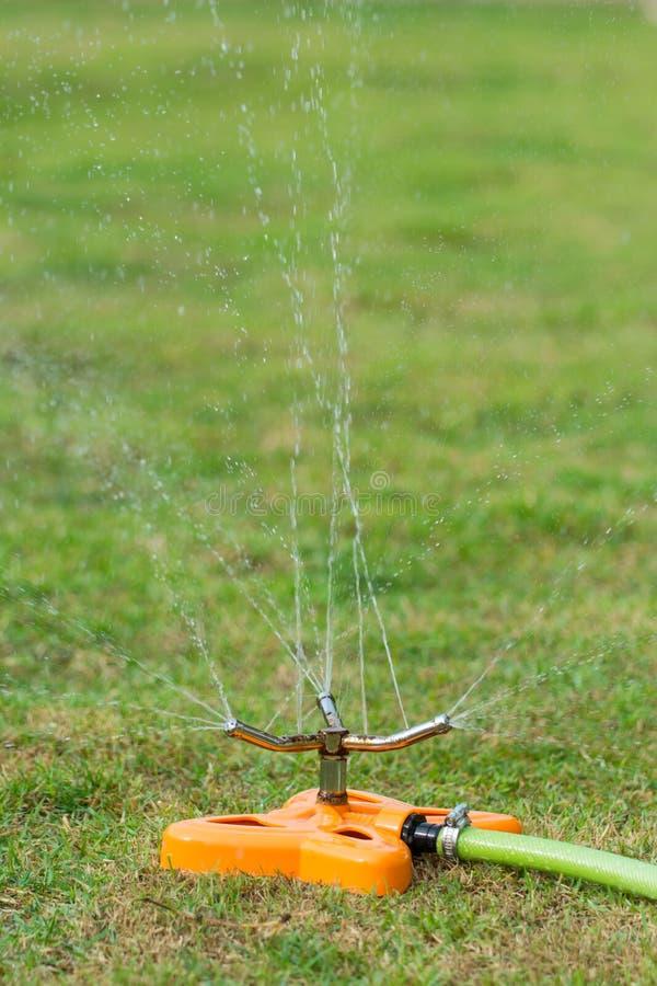 watering royalty-vrije stock foto