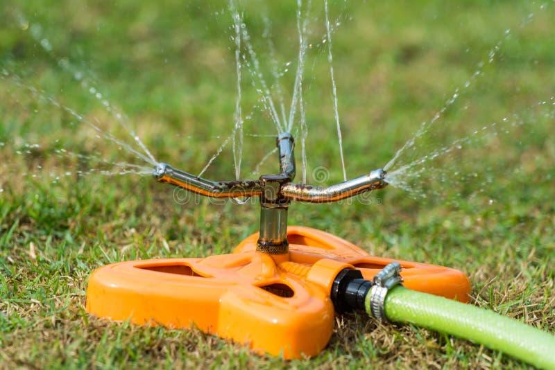 watering stock afbeeldingen