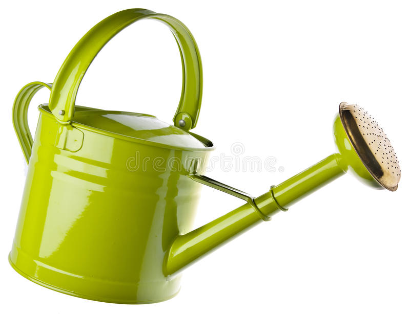 Watering Can. Isolated on white