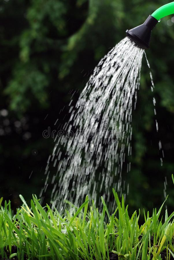 Download Watering can stock image. Image of droplets, irrigation - 14854551