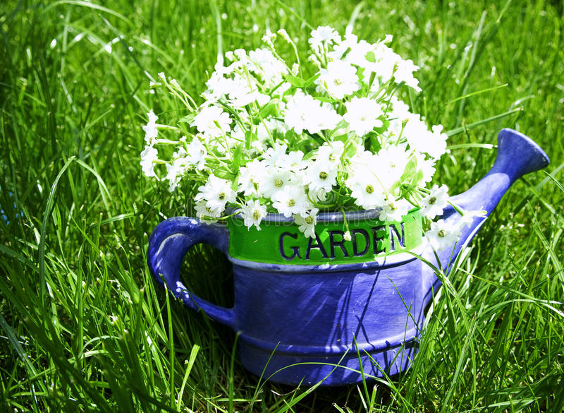 Download Watering Can Royalty Free Stock Photos - Image: 19291728