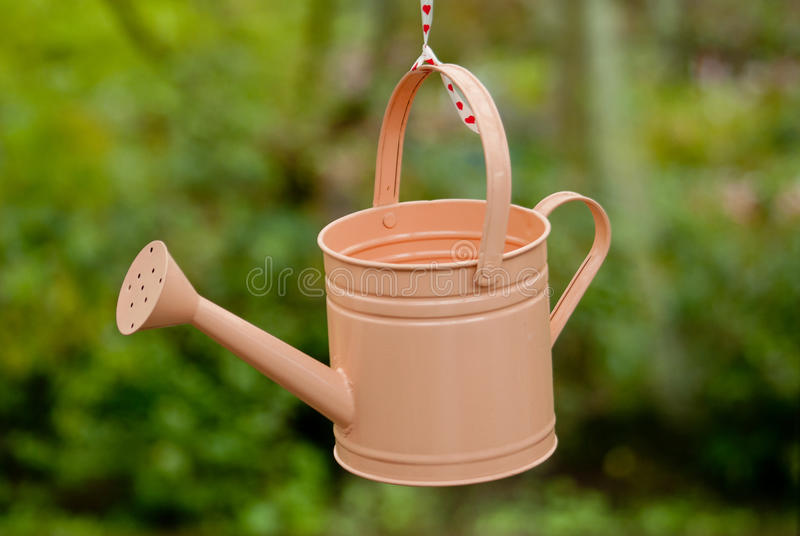 Download Watering-can stock illustration. Illustration of item - 24587337