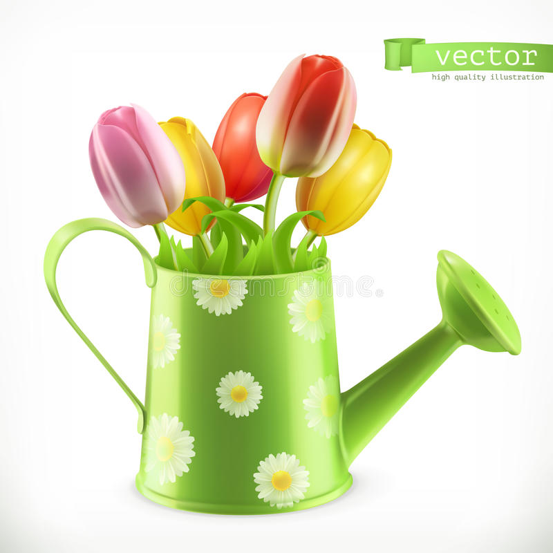 Watering can and a bouquet of tulips, spring flowers vector icon vector illustration