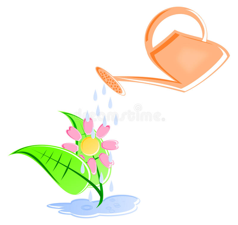 Watering Can and Flower royalty free stock photography
