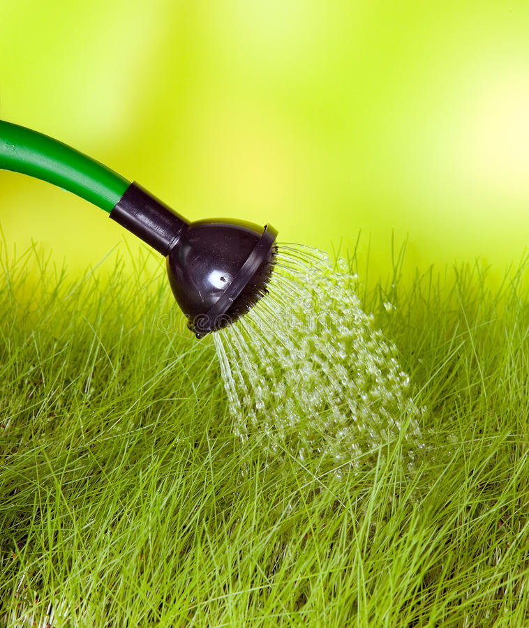 Watering can and grass stock image