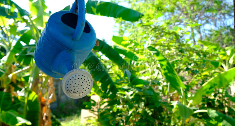 Watering can hanging with the roof on the garden background royalty free stock photo