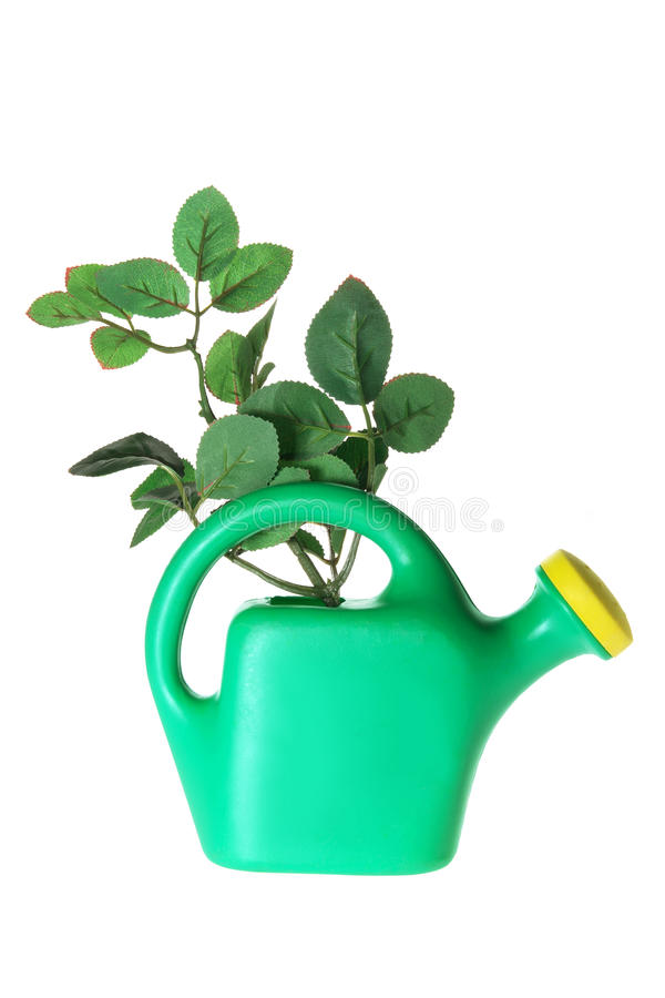 Watering Can and Leaves royalty free stock images