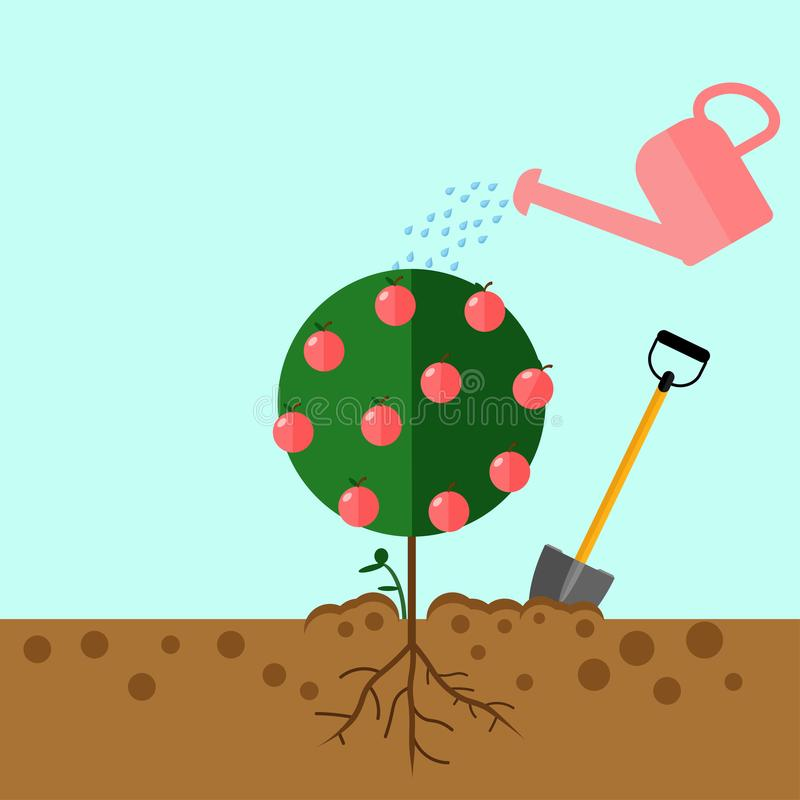 Watering can sprays water drops. Grow tree from the seed tree. Sprout, sapling with shovel, spade. royalty free stock photos