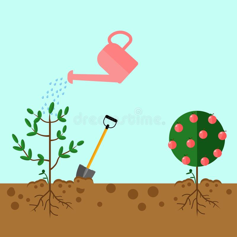 Watering can sprays water drops. New plant, sprout, sapling with shovel, spade isolated on background. Gardening, planting process stock images