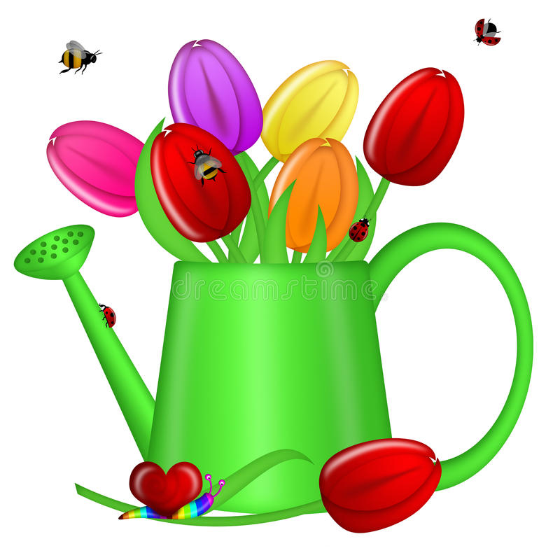 Watering Can With Spring Tulip Flowers Stock Photography