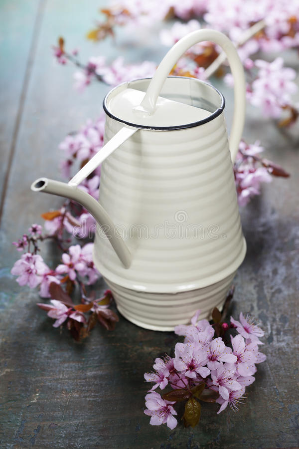 Watering can on wooden table stock photo