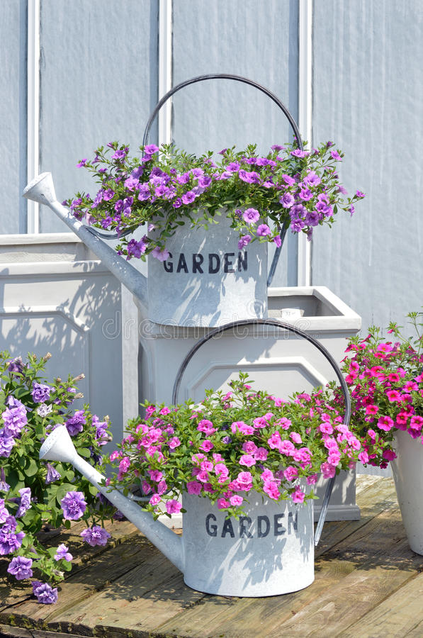 Watering cans with flowers. Decorative watering cans with flowers and text Garden stock photos