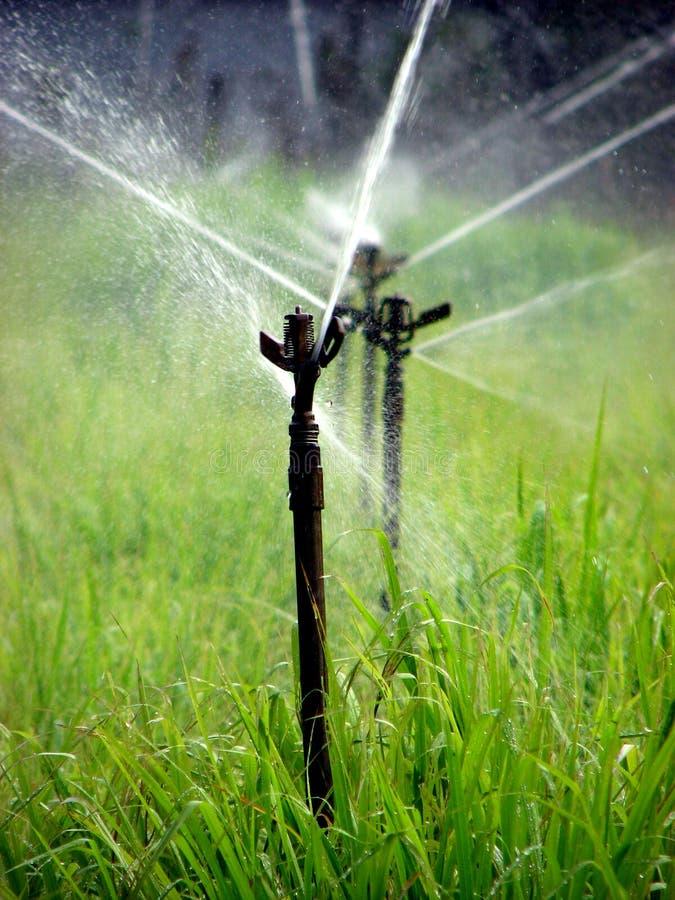 Watering Fields stock photo