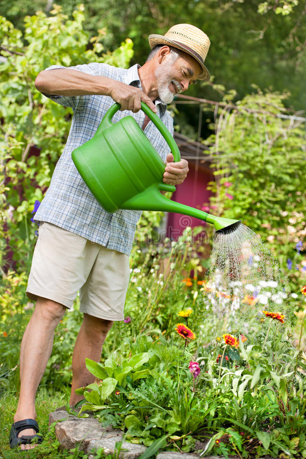Watering the flowers in the garden stock photography