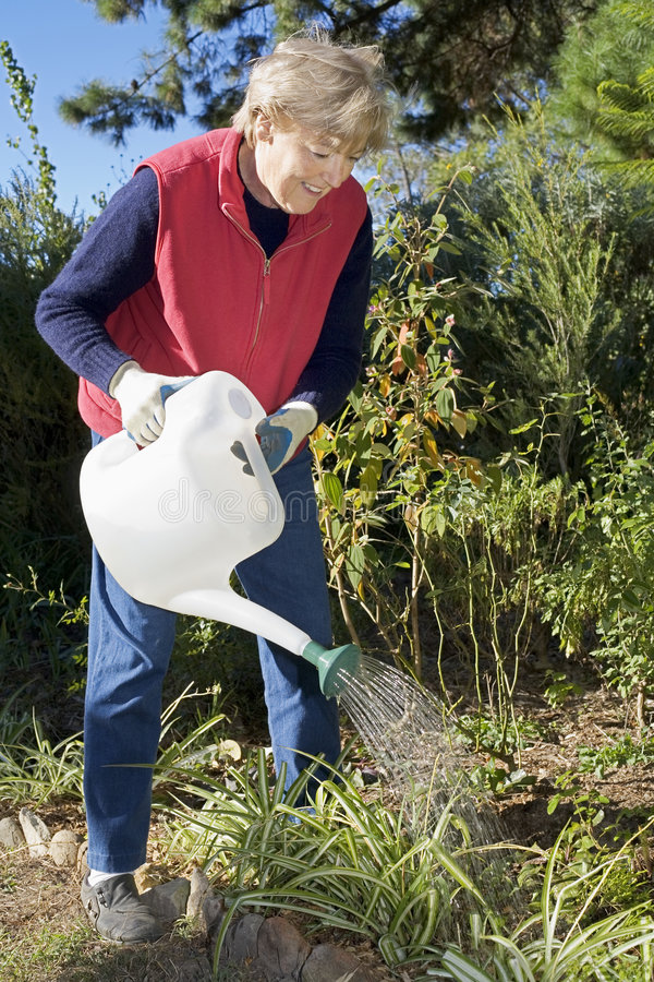 Watering the garden stock photography